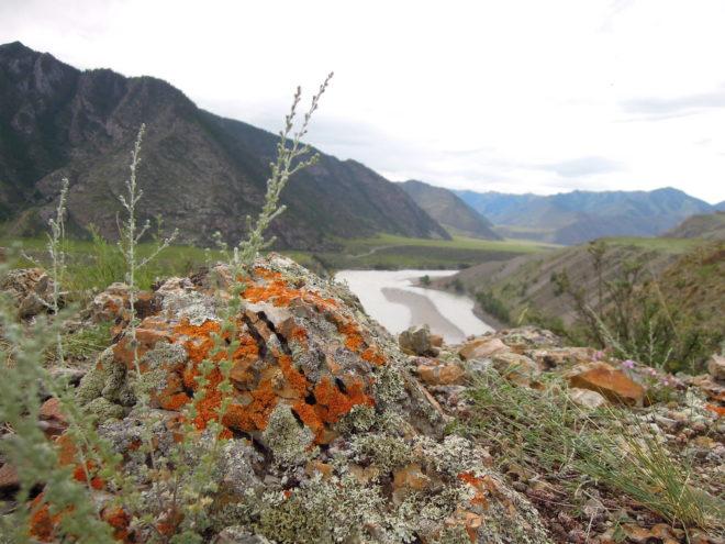 puteshestvie-na-Altay